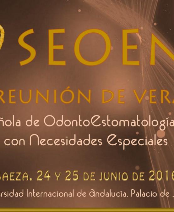 SEOENE IX REUNIÓN DE VERANO